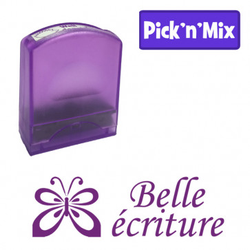 Teacher Stamps | Belle écriture Self-inking. Reinkable Value Range