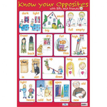 School Educational Posters | Opposites Reception and Key Stage 1 for Classroom Displays