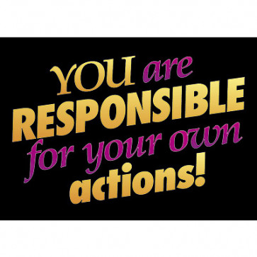 School Posters | You are responsible for your own actions!  PSHE Poster
