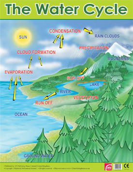 Educational School Posters | Water Cycle Reference Chart for the ...