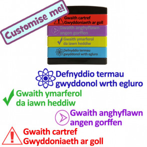 School Stamps | Welsh Language Multi-stamp