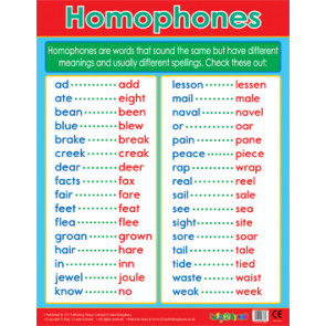 School Posters | Homophones Literacy Reference Chart