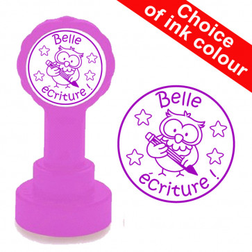 Teacher Stamp | Belle écriture - Owl Design, French Language Stamp