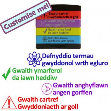 School Stamps | Welsh Language Multi-stamp