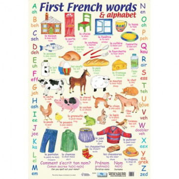 School Educational Posters | French Words and Alphabet for Classroom Displays