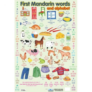 School Educational Posters | First Mandarin Words and Alphabet for Classroom Displays