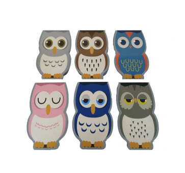 Class Gifts | Shaped Owl Mini Notepads / Memos