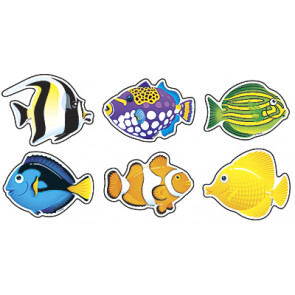 Classroom Displays | 36 x Tropical Fish Cut Out Cards