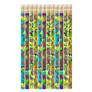 Pencils for Kids | 12 x Wise Owl Corral Pencils
