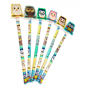 Class Gift / Pupil Presents | Cute Owl Pencils with Large Eraser Ends