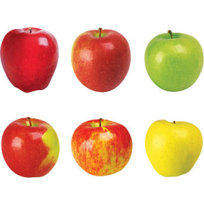 Classroom Display Picture Cards   Photo Apple Design Cut Outs x 36